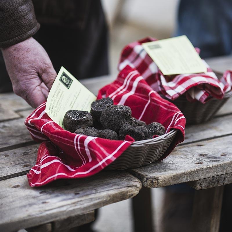 """truffe noire """"tuber mélanosporum"""" en direct du producteur"""
