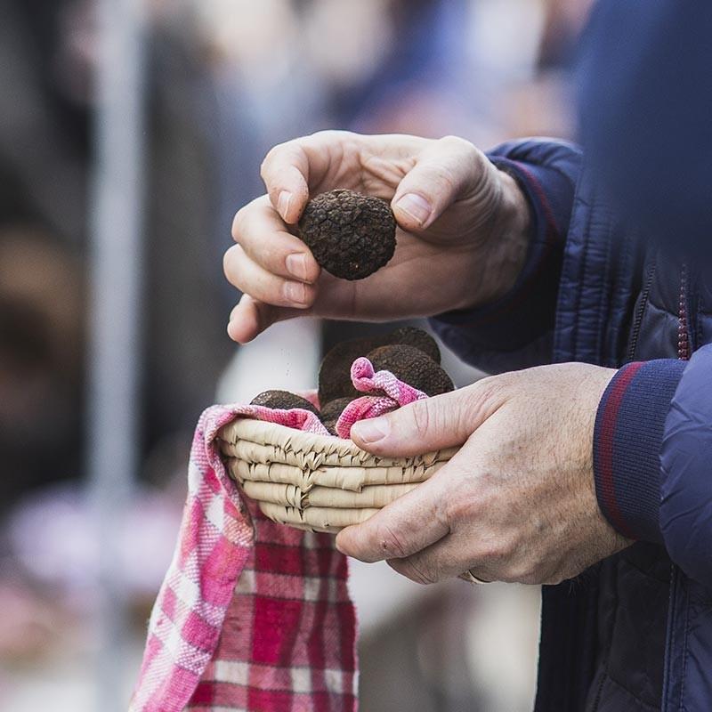 truffe noire fraîche en vente en ligne